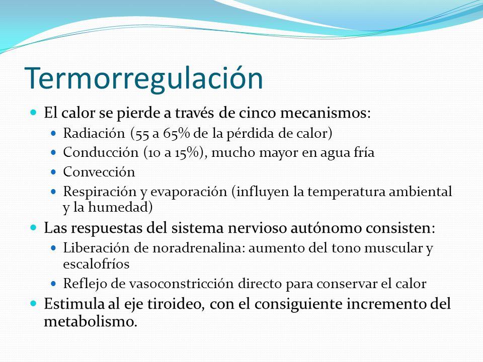 Termorregulación El calor se pierde a través de cinco mecanismos: Radiación (55 a 65% de la pérdida de calor) Conducción (10 a 15%), mucho mayor en ag