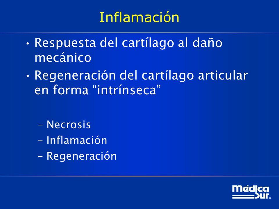 Inflamación Respuesta del cartílago al daño mecánico Regeneración del cartílago articular en forma intrínseca –Necrosis –Inflamación –Regeneración