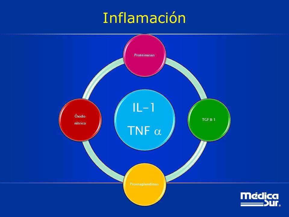 Inflamación IL-1 TNF ProteinasasTGF 1Prostaglandinas Óxido nítrico