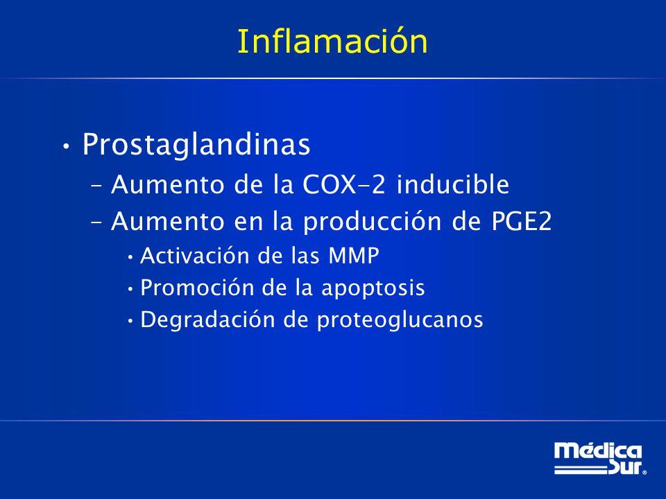 Inflamación Prostaglandinas –Aumento de la COX-2 inducible –Aumento en la producción de PGE2 Activación de las MMP Promoción de la apoptosis Degradación de proteoglucanos