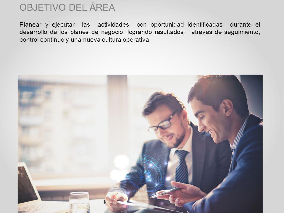 Planear y ejecutar las actividades con oportunidad identificadas durante el desarrollo de los planes de negocio, logrando resultados atreves de seguimiento, control continuo y una nueva cultura operativa.
