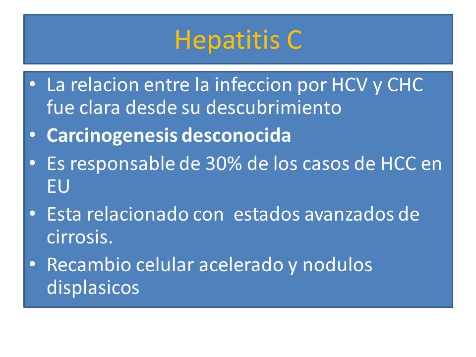 Hepatitis C El grado de inflamacion se relaciona con el pronostico Infeccion CHH 30 anos