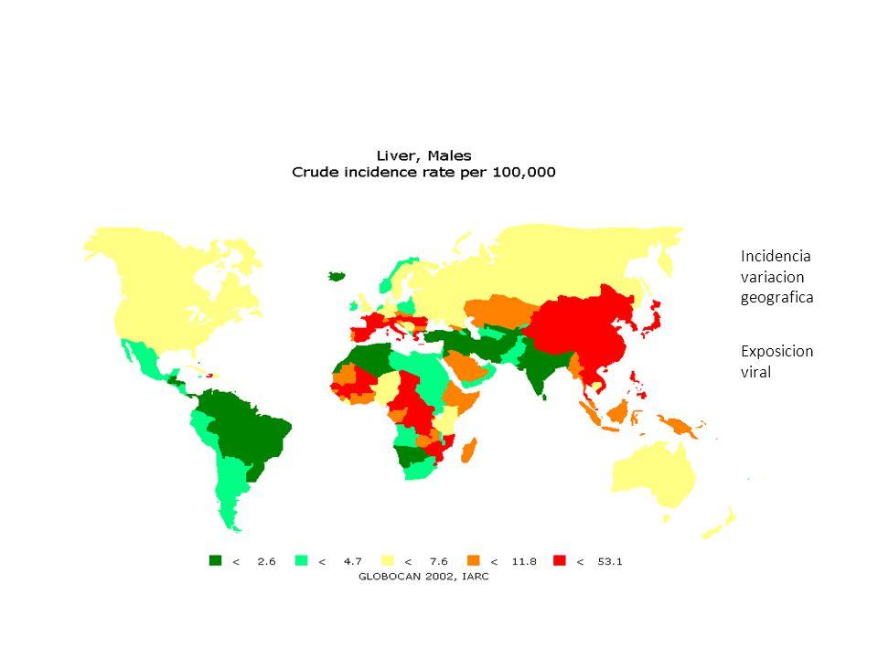 Incidencia variacion geografica Exposicion viral