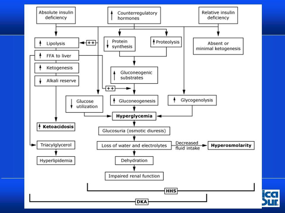 Cuadro Clínico El estado hiperosmolar evoluciona en varios días mientras que la cetoacidosis es más breve Presentan antecedente de poliuria, polidipsia y polifagia, perdida de peso Nausea, vómito Dolor abdominal (cetoacidosis) Hiperventilación (cetoacidosis) Deshidratación Alteraciones en estado de alerta hasta coma (Estado Hiperosmolar)