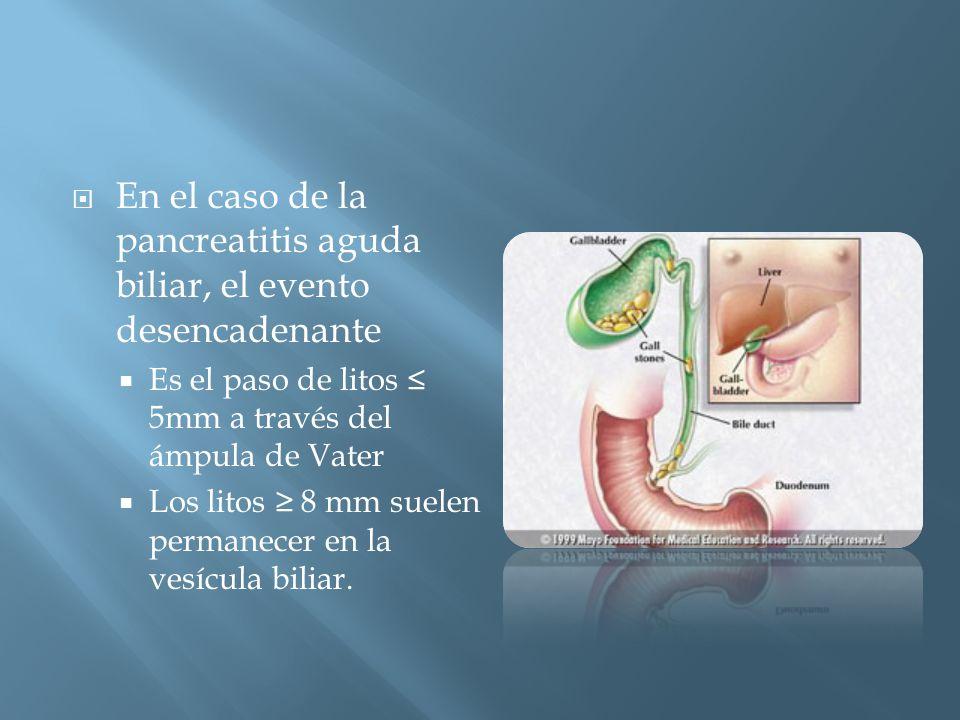 En el caso de la pancreatitis aguda biliar, el evento desencadenante Es el paso de litos 5mm a través del ámpula de Vater Los litos 8 mm suelen permanecer en la vesícula biliar.