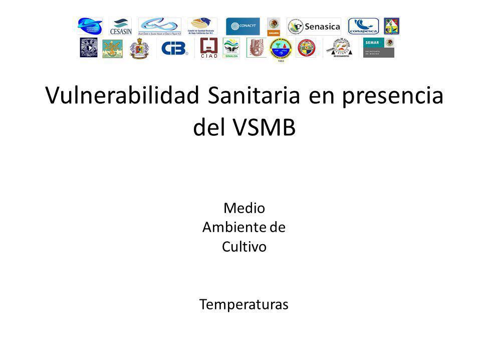 Medio Ambiente de Cultivo Temperaturas Vulnerabilidad Sanitaria en presencia del VSMB