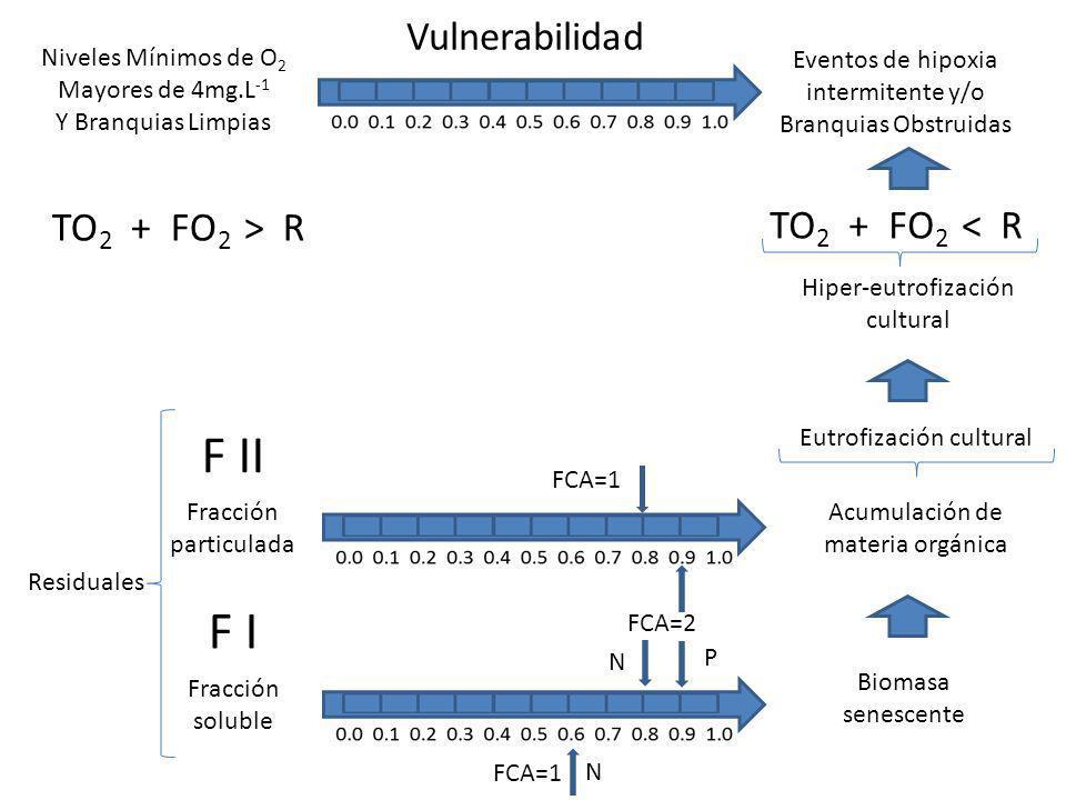 Niveles Mínimos de O 2 Mayores de 4mg.L -1 Y Branquias Limpias Eventos de hipoxia intermitente y/o Branquias Obstruidas Vulnerabilidad TO 2 + FO 2 > R