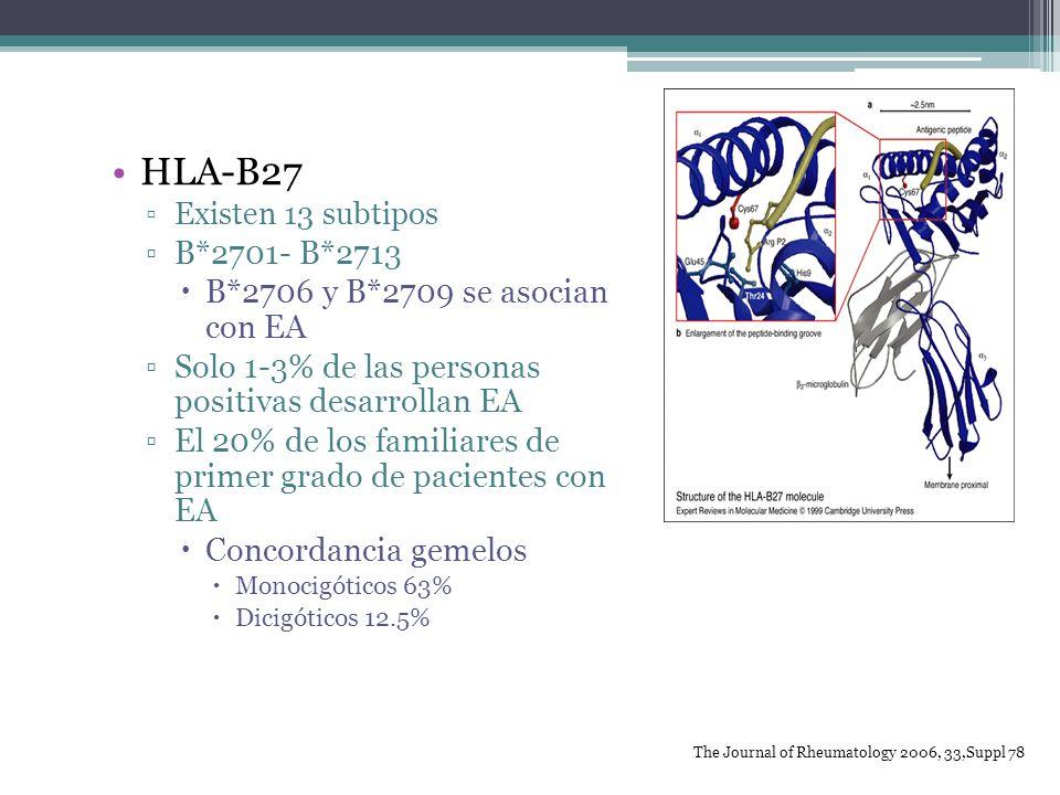 HLA-B27 Existen 13 subtipos B*2701- B*2713 B*2706 y B*2709 se asocian con EA Solo 1-3% de las personas positivas desarrollan EA El 20% de los familiar