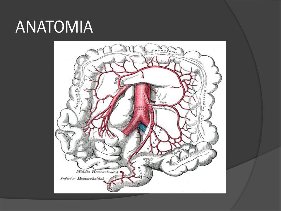 Síndrome de Gardner AD, penetrancia 80-100% Osteomas en huesos faciales + Quistes epidermoides + Poliposis + Fibromas Síndrome de Turcott AD Tumores del SNC + Poliposis La sintomatolgía aparece desde los 16 años y el cáncer se diagnostica a los 40 años en el 90% de los pacientes