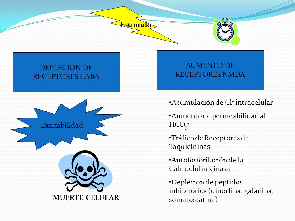 Estímulo DEPLECION DE RECEPTORES GABA AUMENTO DE RECEPTORES NMDA Excitabilidad Acumulación de Cl - intracelular Aumento de permeabilidad al HCO 3 - Tráfico de Receptores de Taquicininas Autofosforilación de la Calmodulin-cinasa Depleción de péptidos inhibitorios (dinorfina, galanina, somatostatina) MUERTE CELULAR