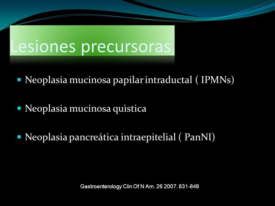 Lesiones precursoras Neoplasia mucinosa papilar intraductal ( IPMNs) Neoplasia mucinosa quìstica Neoplasia pancreática intraepitelial ( PanNI) Gastroe
