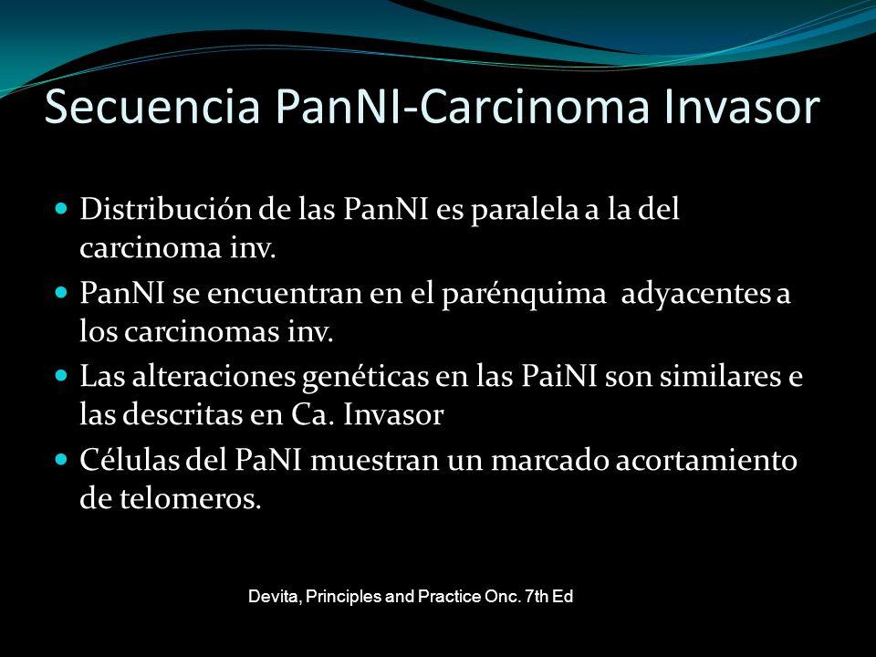 Secuencia PanNI-Carcinoma Invasor Distribución de las PanNI es paralela a la del carcinoma inv. PanNI se encuentran en el parénquima adyacentes a los