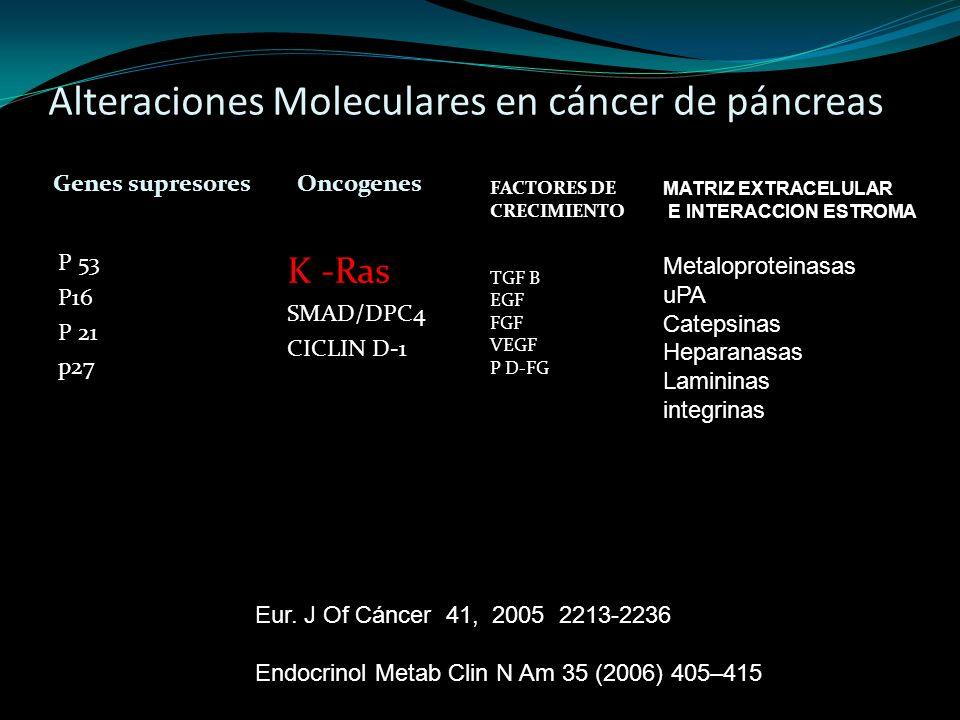 Alteraciones Moleculares en cáncer de páncreas Genes supresores Oncogenes P 53 P16 P 21 p27 K -Ras SMAD/DPC4 CICLIN D-1 FACTORES DE CRECIMIENTO TGF B
