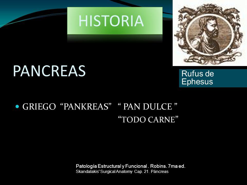 PANCREAS GRIEGO PANKREAS PAN DULCE TODO CARNE Patología Estructural y Funcional. Robins. 7ma ed. Skandalakis' Surgical Anatomy Cap. 21. Páncreas Rufus