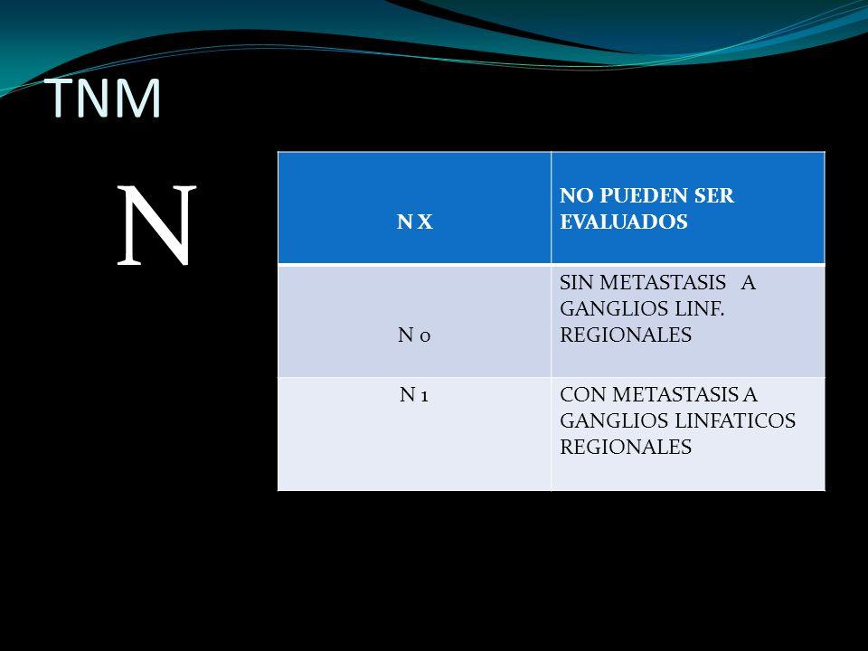 TNM N N X NO PUEDEN SER EVALUADOS N 0 SIN METASTASIS A GANGLIOS LINF. REGIONALES N 1CON METASTASIS A GANGLIOS LINFATICOS REGIONALES
