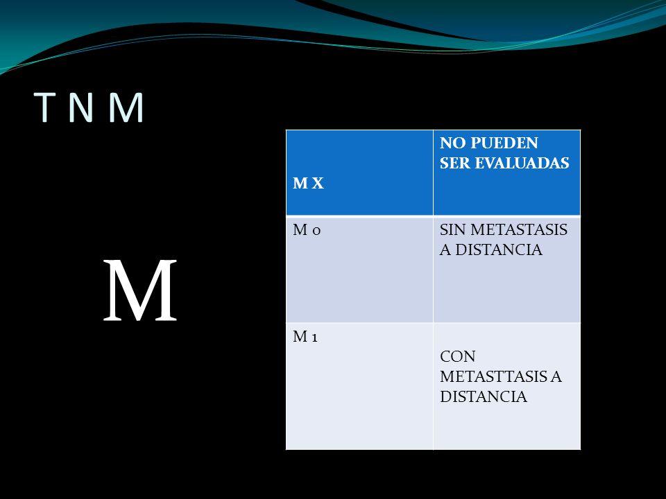 T N M M M X NO PUEDEN SER EVALUADAS M 0SIN METASTASIS A DISTANCIA M 1 CON METASTTASIS A DISTANCIA