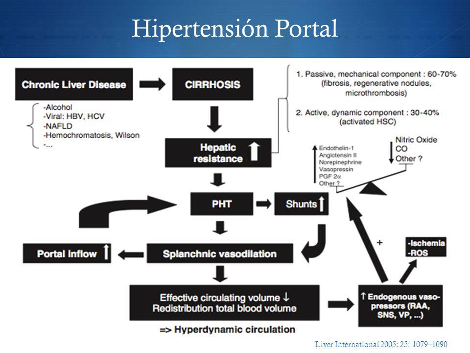 Hipertensión Portal Liver International 2005: 25: 1079–1090