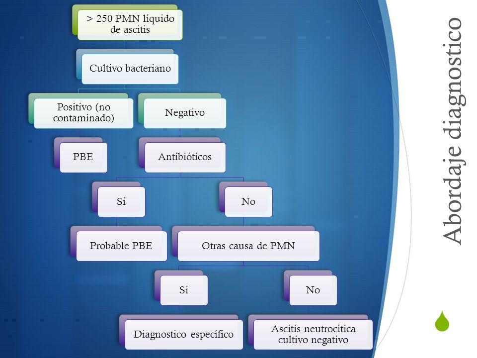 Abordaje diagnostico > 250 PMN líquido de ascitis Cultivo bacteriano Positivo (no contaminado) PBENegativoAntibióticosSiProbable PBENoOtras causa de P