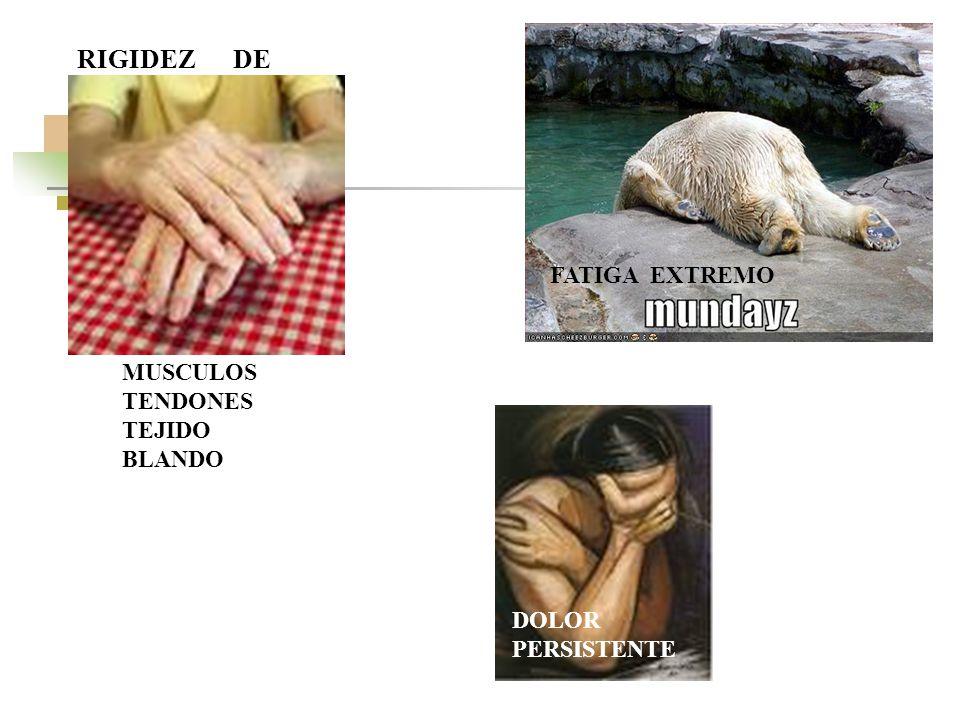 FATIGA EXTREMO DOLOR PERSISTENTE RIGIDEZ DE MUSCULOS TENDONES TEJIDO BLANDO