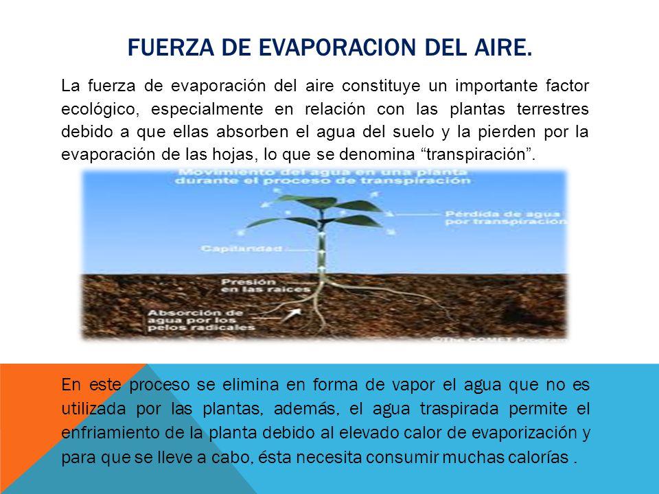 FUERZA DE EVAPORACION DEL AIRE. La fuerza de evaporación del aire constituye un importante factor ecológico, especialmente en relación con las plantas