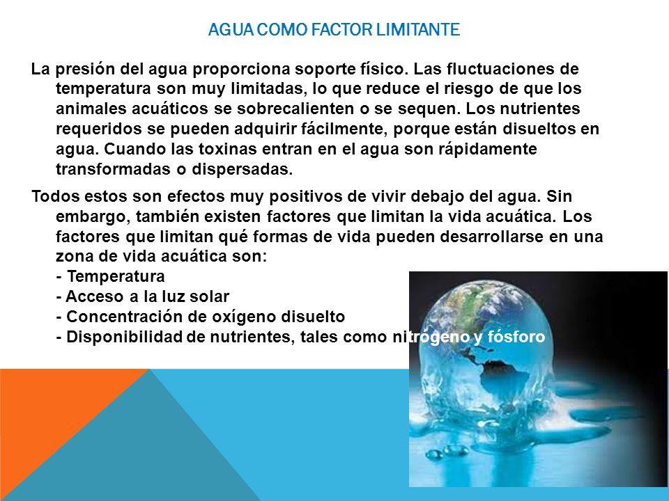 AGUA COMO FACTOR LIMITANTE La presión del agua proporciona soporte físico. Las fluctuaciones de temperatura son muy limitadas, lo que reduce el riesgo