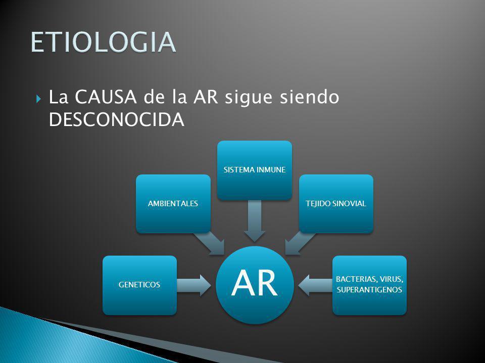 La CAUSA de la AR sigue siendo DESCONOCIDA AR GENETICOSAMBIENTALESSISTEMA INMUNETEJIDO SINOVIAL BACTERIAS, VIRUS, SUPERANTIGENOS