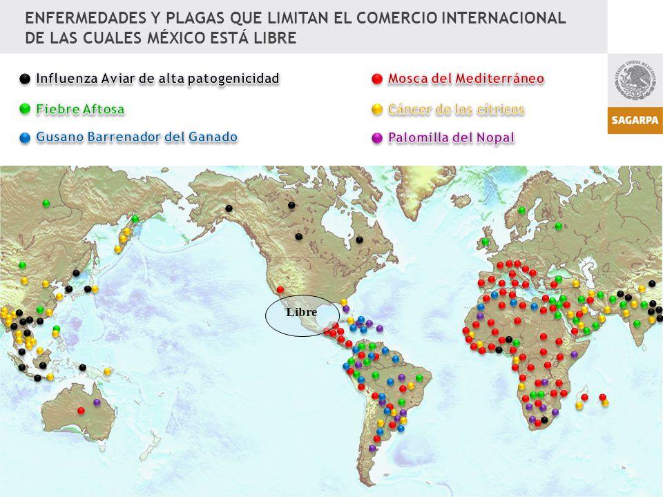 ENFERMEDADES Y PLAGAS QUE LIMITAN EL COMERCIO INTERNACIONAL DE LAS CUALES MÉXICO ESTÁ LIBRE Libre