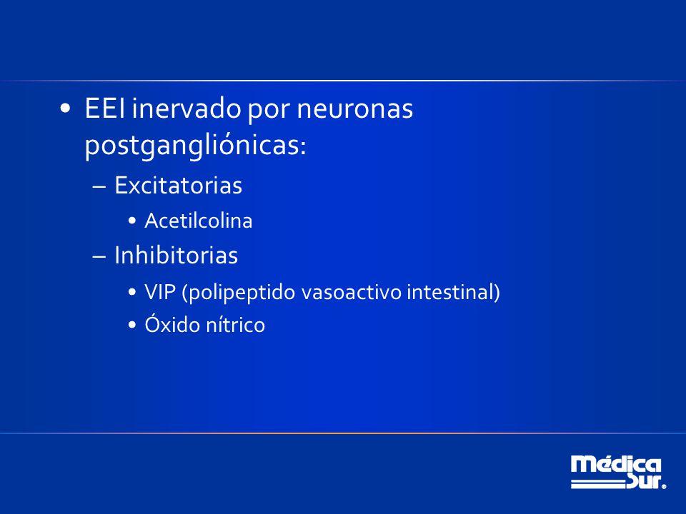 EEI inervado por neuronas postgangliónicas: –Excitatorias Acetilcolina –Inhibitorias VIP (polipeptido vasoactivo intestinal) Óxido nítrico