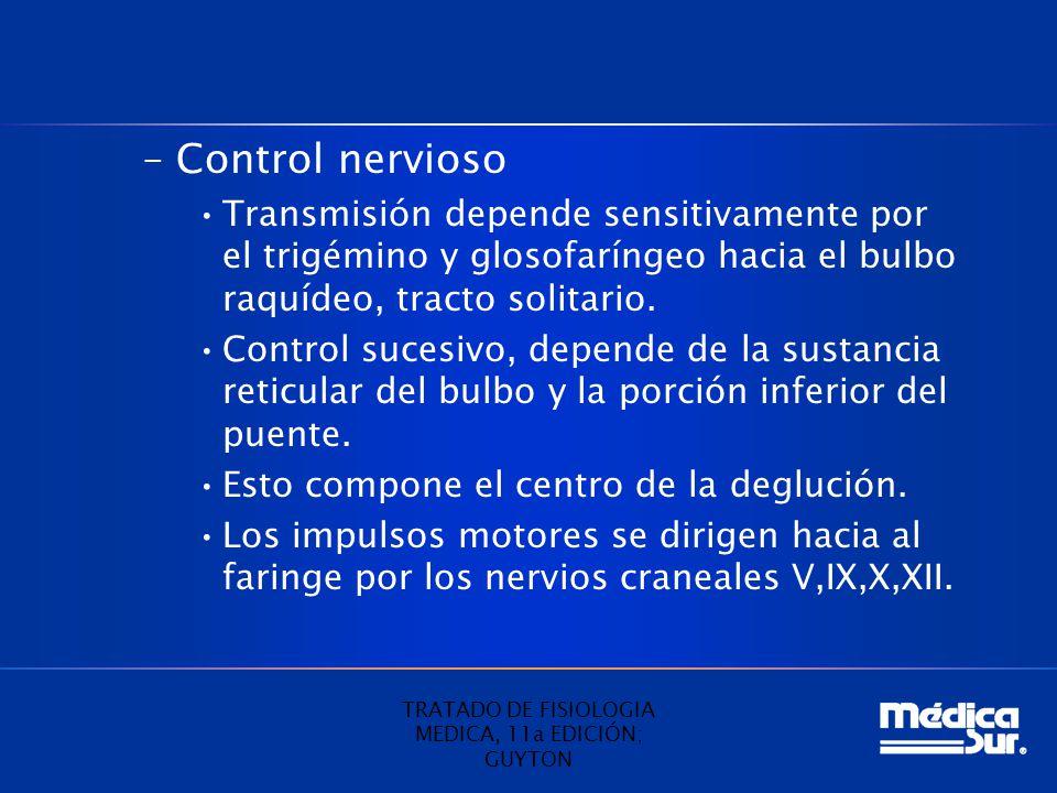 –Control nervioso Transmisión depende sensitivamente por el trigémino y glosofaríngeo hacia el bulbo raquídeo, tracto solitario. Control sucesivo, dep