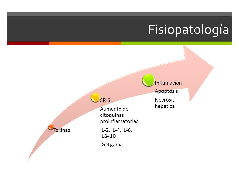 Fisiopatología Toxinas SRIS Aumento de citoquinas proinflamatorias IL-2, IL-4, IL-6, IL8- 10 IGN gama Inflamación Apoptosis Necrosis hepática