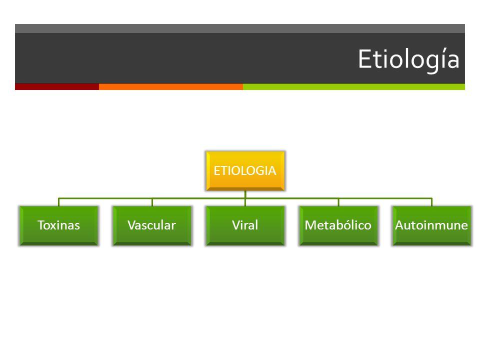 Etiología ETIOLOGIA ToxinasVascularViralMetabólicoAutoinmune