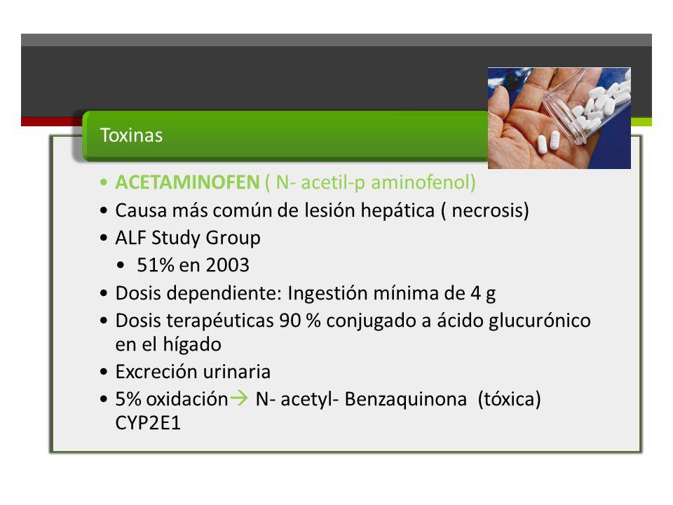 ACETAMINOFEN ( N- acetil-p aminofenol) Causa más común de lesión hepática ( necrosis) ALF Study Group 51% en 2003 Dosis dependiente: Ingestión mínima de 4 g Dosis terapéuticas 90 % conjugado a ácido glucurónico en el hígado Excreción urinaria 5% oxidación N- acetyl- Benzaquinona (tóxica) CYP2E1 Toxinas