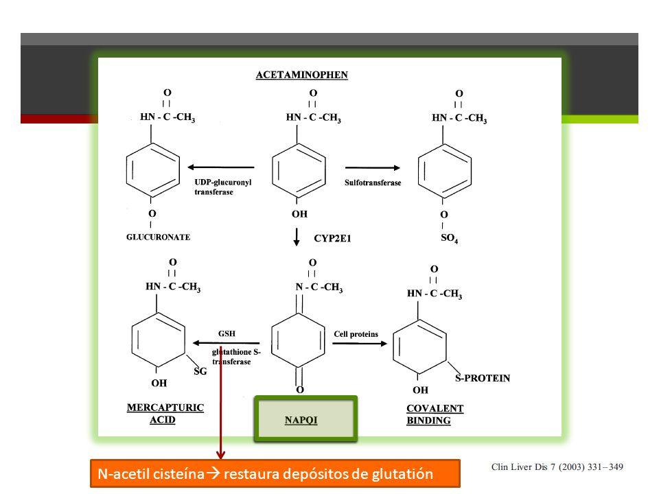 N-acetil cisteína restaura depósitos de glutatión