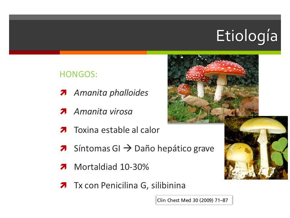 Etiología HONGOS: Amanita phalloides Amanita virosa Toxina estable al calor Síntomas GI Daño hepático grave Mortaldiad 10-30% Tx con Penicilina G, silibinina