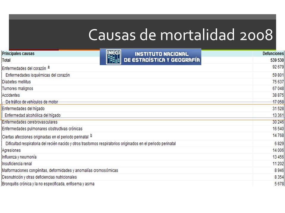 Causas de mortalidad 2008