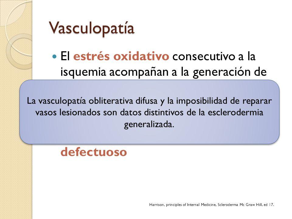 Vasculopatía El estrés oxidativo consecutivo a la isquemia acompañan a la generación de radicales libres que lesionan más el endotelio a través de la
