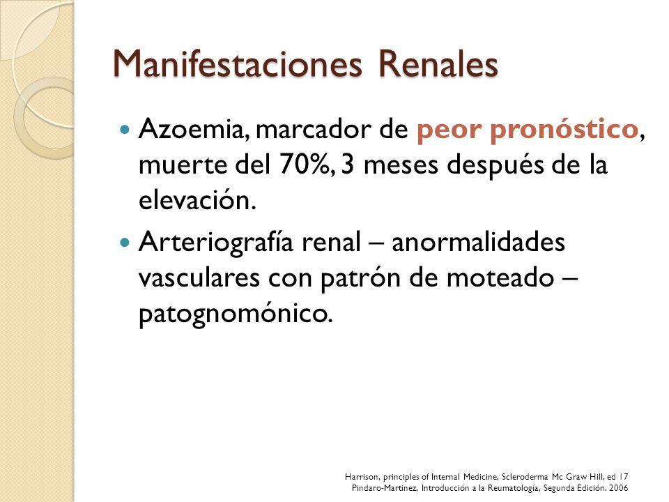 Manifestaciones Renales Azoemia, marcador de peor pronóstico, muerte del 70%, 3 meses después de la elevación. Arteriografía renal – anormalidades vas