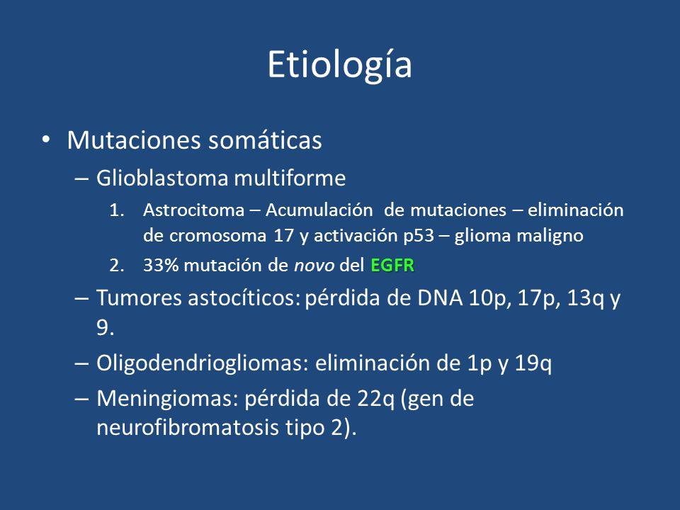 Etiología Mutaciones somáticas – Glioblastoma multiforme 1.Astrocitoma – Acumulación de mutaciones – eliminación de cromosoma 17 y activación p53 – gl