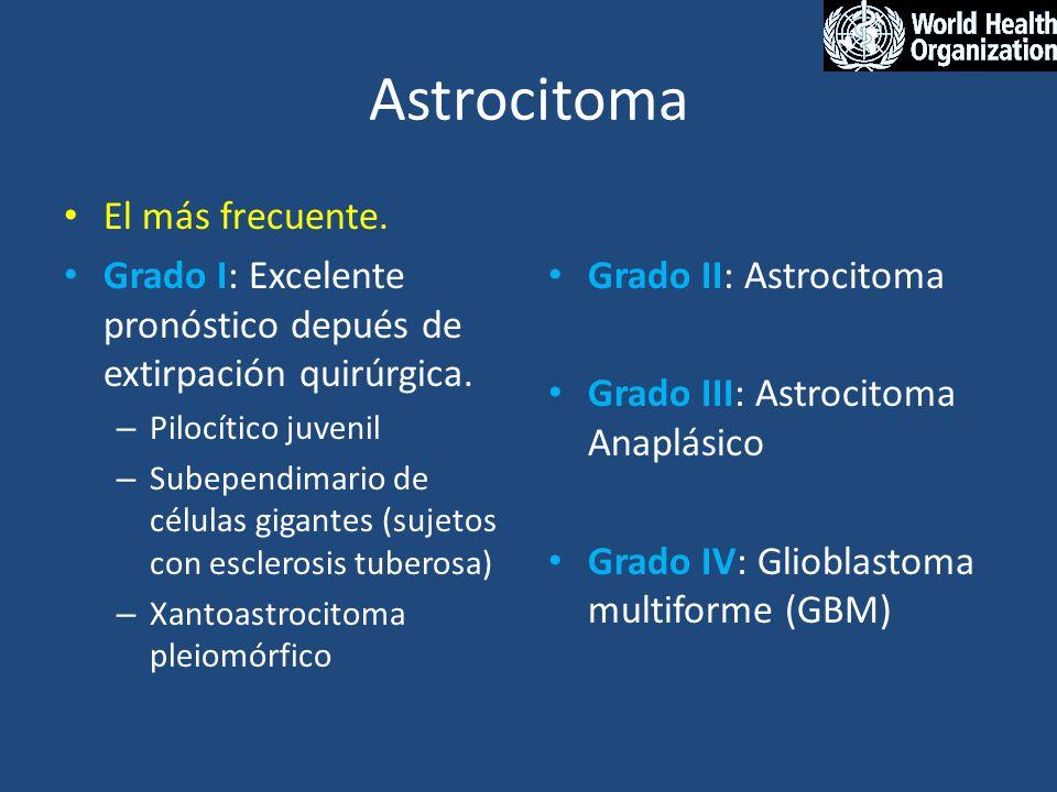 Astrocitoma El más frecuente. Grado I: Excelente pronóstico depués de extirpación quirúrgica. – Pilocítico juvenil – Subependimario de células gigante