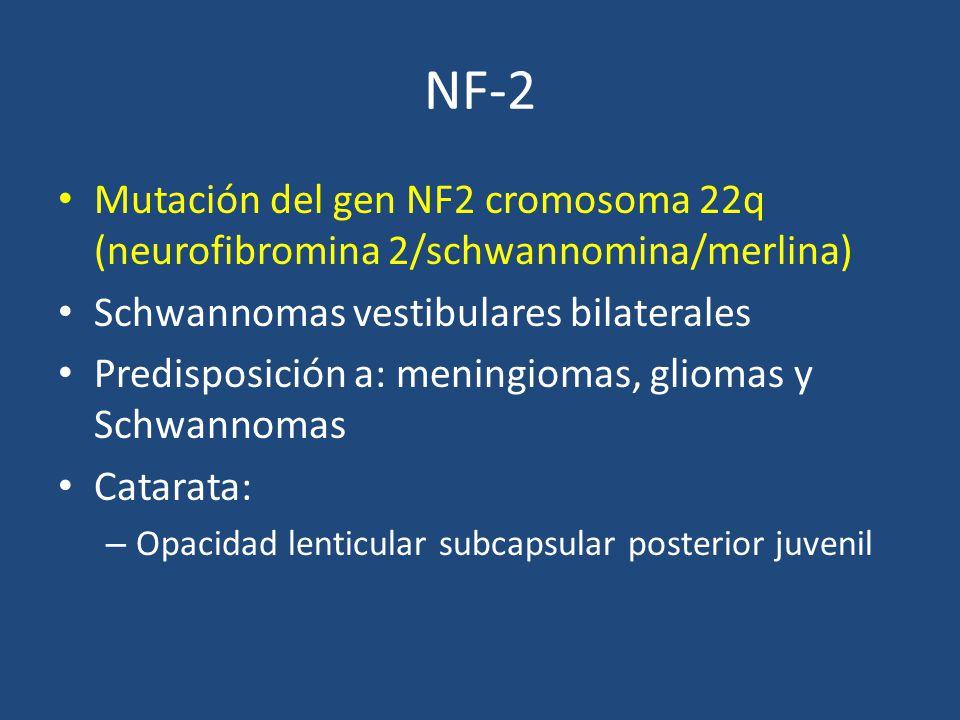 NF-2 Mutación del gen NF2 cromosoma 22q (neurofibromina 2/schwannomina/merlina) Schwannomas vestibulares bilaterales Predisposición a: meningiomas, gliomas y Schwannomas Catarata: – Opacidad lenticular subcapsular posterior juvenil