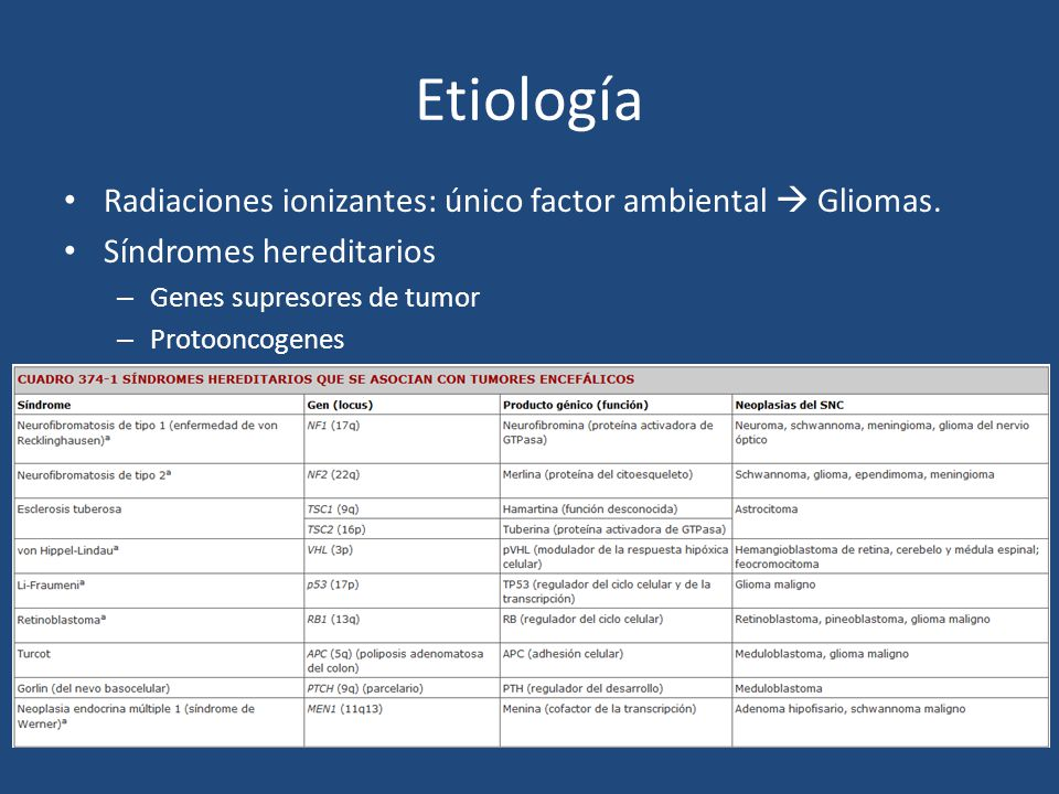 Etiología Mutaciones somáticas – Glioblastoma multiforme 1.Astrocitoma – Acumulación de mutaciones – eliminación de cromosoma 17 y activación p53 – glioma maligno EGFR 2.33% mutación de novo del EGFR – Tumores astocíticos: pérdida de DNA 10p, 17p, 13q y 9.