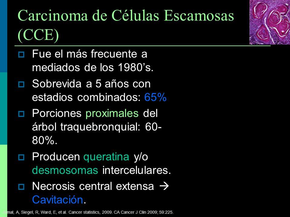 Carcinoma de Células Escamosas (CCE) Fue el más frecuente a mediados de los 1980s. Sobrevida a 5 años con estadios combinados: 65% Porciones proximale