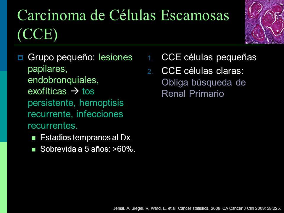 Carcinoma de Células Escamosas (CCE) Grupo pequeño: lesiones papilares, endobronquiales, exofíticas tos persistente, hemoptisis recurrente, infeccione