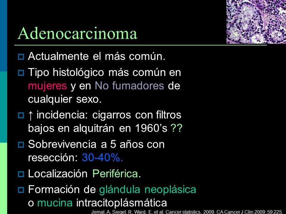 Adenocarcinoma Actualmente el más común. Tipo histológico más común en mujeres y en No fumadores de cualquier sexo. incidencia: cigarros con filtros b