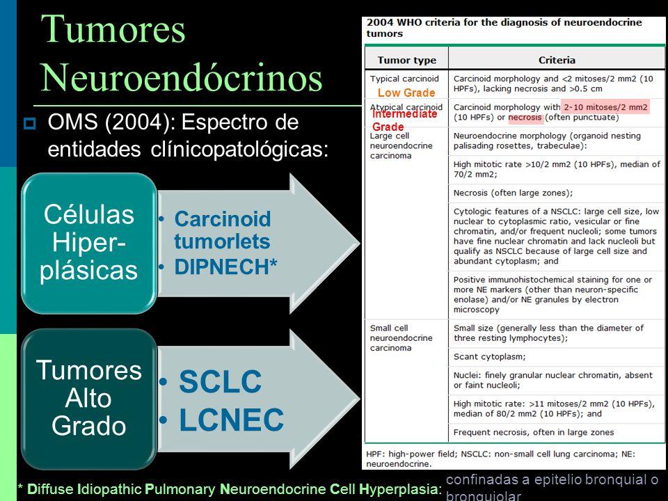 Tumores Neuroendócrinos OMS (2004): Espectro de entidades clínicopatológicas: Carcinoid tumorlets DIPNECH* Células Hiper- plásicas SCLC LCNEC Tumores