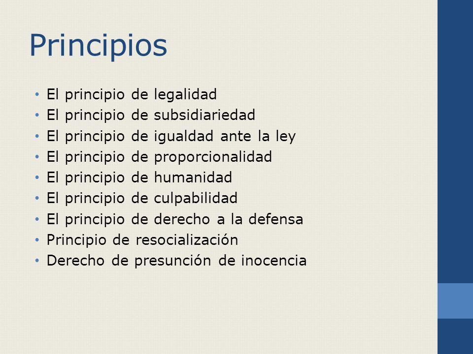 Principios El principio de legalidad El principio de subsidiariedad El principio de igualdad ante la ley El principio de proporcionalidad El principio de humanidad El principio de culpabilidad El principio de derecho a la defensa Principio de resocialización Derecho de presunción de inocencia