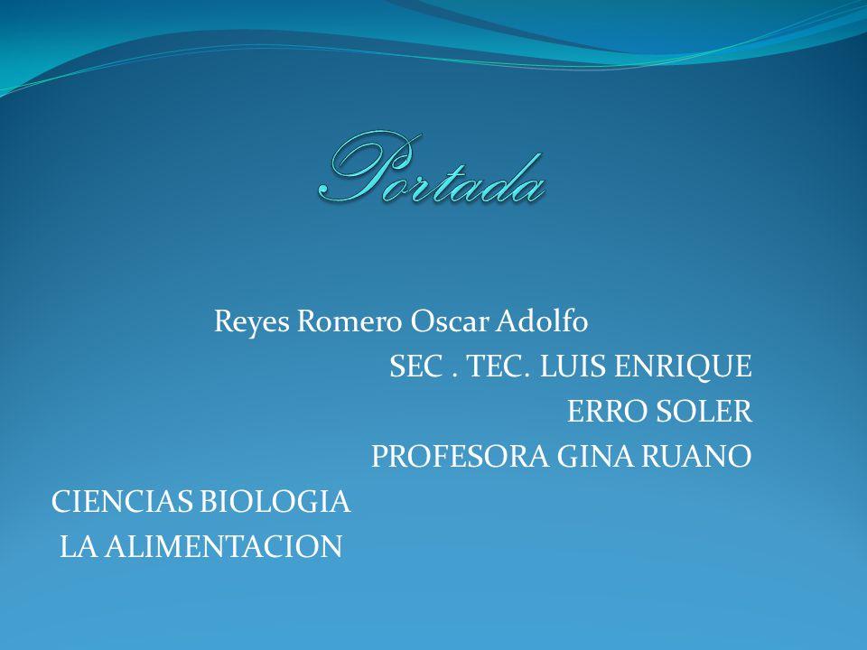 Reyes Romero Oscar Adolfo SEC. TEC. LUIS ENRIQUE ERRO SOLER PROFESORA GINA RUANO CIENCIAS BIOLOGIA LA ALIMENTACION