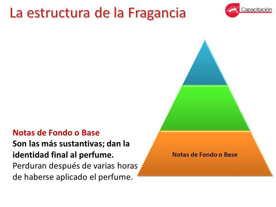 Notas de Fondo o Base Son las más sustantivas; dan la identidad final al perfume.