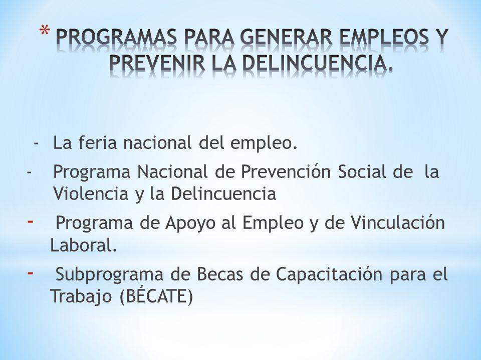 -La feria nacional del empleo. -Programa Nacional de Prevención Social de la Violencia y la Delincuencia - Programa de Apoyo al Empleo y de Vinculació