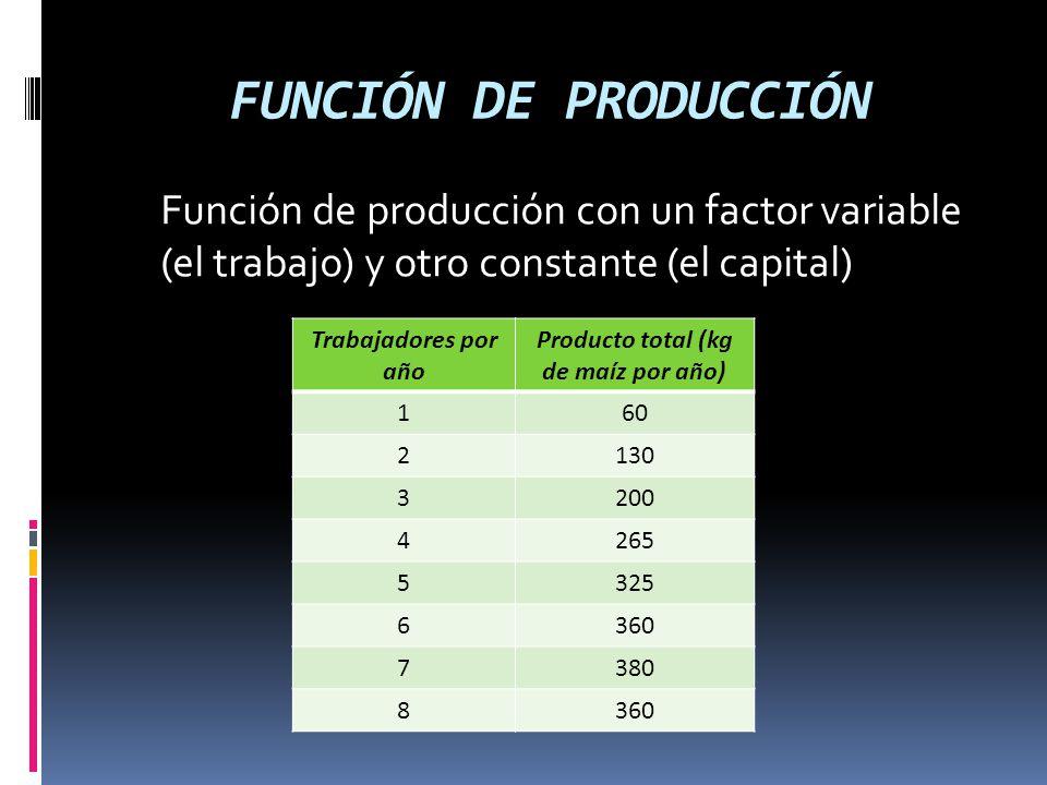 FUNCIÓN DE PRODUCCIÓN Función de producción con un factor variable (el trabajo) y otro constante (el capital) Trabajadores por año Producto total (kg